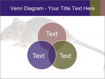0000081791 PowerPoint Templates - Slide 33
