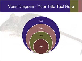 0000081791 PowerPoint Templates - Slide 34