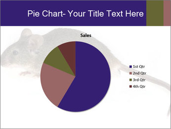 0000081791 PowerPoint Templates - Slide 36
