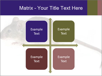 0000081791 PowerPoint Templates - Slide 37