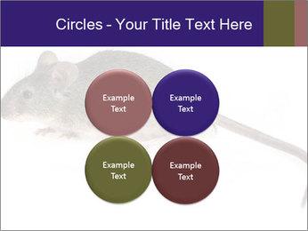 0000081791 PowerPoint Templates - Slide 38