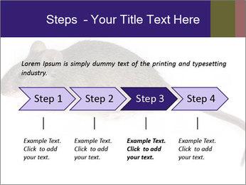 0000081791 PowerPoint Templates - Slide 4