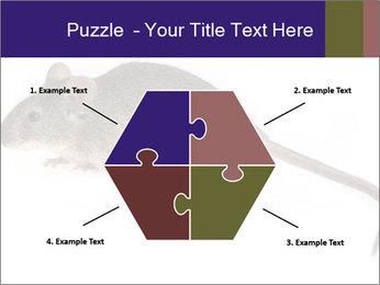 0000081791 PowerPoint Templates - Slide 40