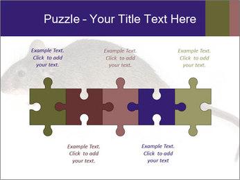 0000081791 PowerPoint Templates - Slide 41