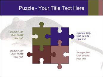 0000081791 PowerPoint Templates - Slide 43