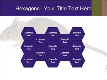 0000081791 PowerPoint Templates - Slide 44