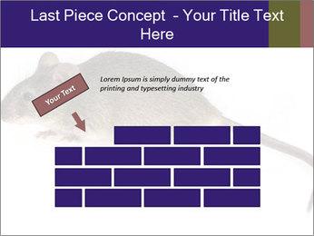 0000081791 PowerPoint Templates - Slide 46