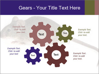 0000081791 PowerPoint Templates - Slide 47