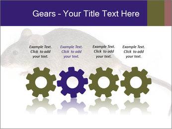 0000081791 PowerPoint Templates - Slide 48