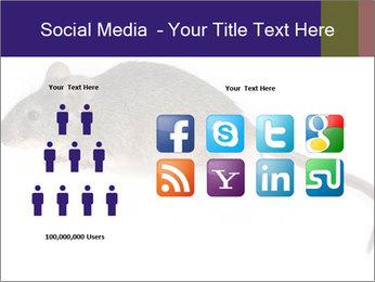 0000081791 PowerPoint Templates - Slide 5