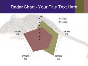 0000081791 PowerPoint Templates - Slide 51
