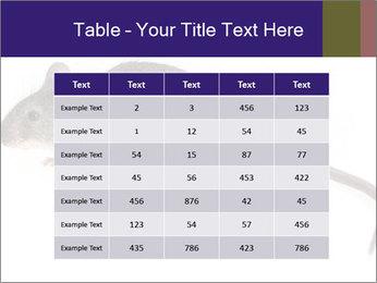 0000081791 PowerPoint Templates - Slide 55