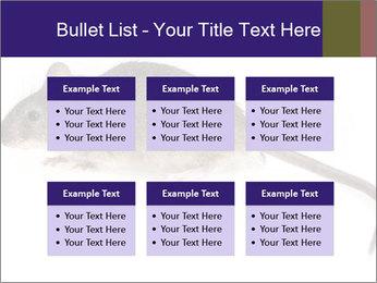 0000081791 PowerPoint Templates - Slide 56