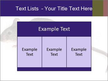 0000081791 PowerPoint Templates - Slide 59