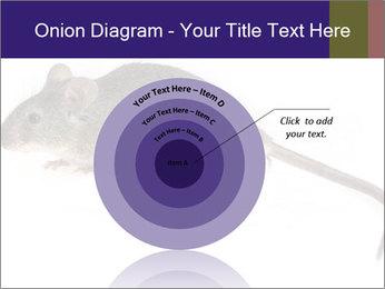 0000081791 PowerPoint Templates - Slide 61