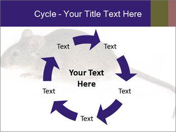 0000081791 PowerPoint Templates - Slide 62