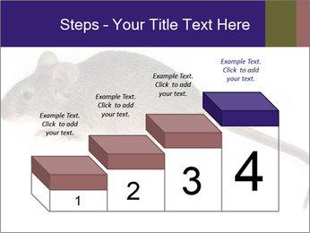 0000081791 PowerPoint Templates - Slide 64