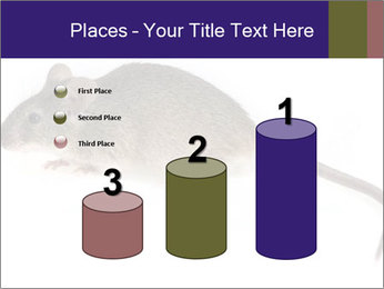 0000081791 PowerPoint Templates - Slide 65