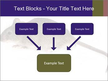 0000081791 PowerPoint Templates - Slide 70