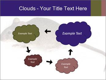 0000081791 PowerPoint Templates - Slide 72