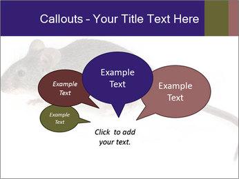 0000081791 PowerPoint Templates - Slide 73