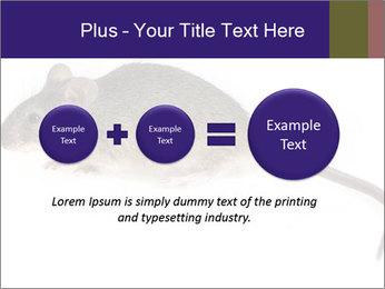 0000081791 PowerPoint Templates - Slide 75