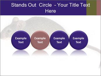 0000081791 PowerPoint Templates - Slide 76