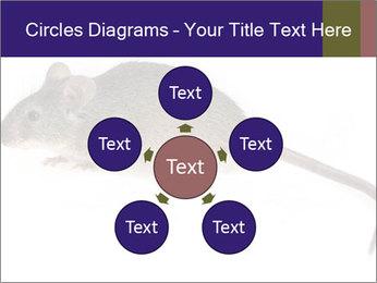 0000081791 PowerPoint Templates - Slide 78