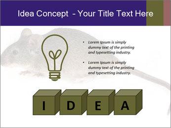 0000081791 PowerPoint Templates - Slide 80