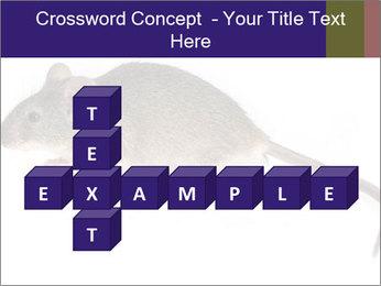0000081791 PowerPoint Templates - Slide 82