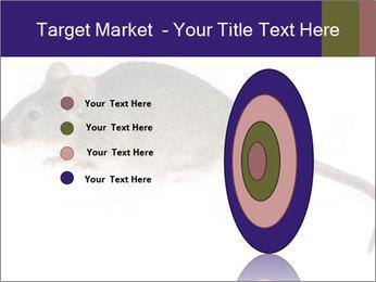 0000081791 PowerPoint Templates - Slide 84