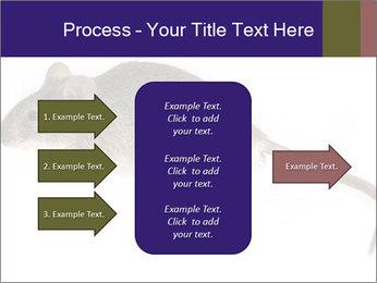 0000081791 PowerPoint Templates - Slide 85