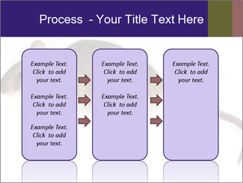 0000081791 PowerPoint Templates - Slide 86