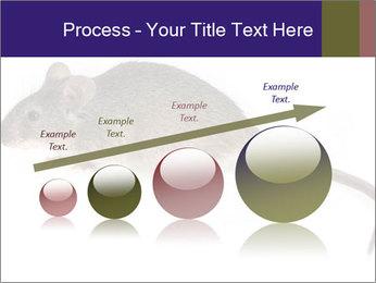 0000081791 PowerPoint Templates - Slide 87