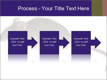 0000081791 PowerPoint Templates - Slide 88