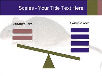 0000081791 PowerPoint Templates - Slide 89