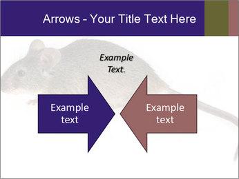 0000081791 PowerPoint Templates - Slide 90