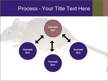 0000081791 PowerPoint Templates - Slide 91