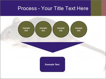 0000081791 PowerPoint Templates - Slide 93