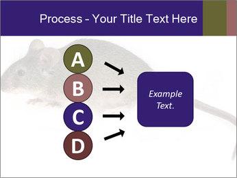 0000081791 PowerPoint Templates - Slide 94