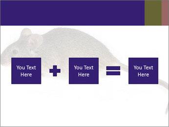 0000081791 PowerPoint Templates - Slide 95