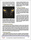 0000081791 Word Templates - Page 4