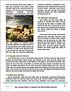 0000081792 Word Template - Page 4
