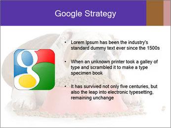 0000081794 PowerPoint Templates - Slide 10