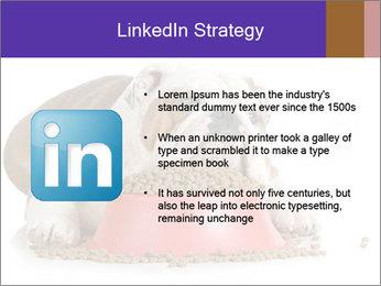 0000081794 PowerPoint Templates - Slide 12