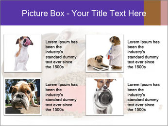0000081794 PowerPoint Templates - Slide 14
