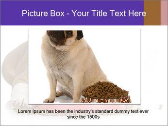 0000081794 PowerPoint Templates - Slide 16