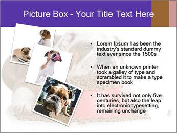 0000081794 PowerPoint Templates - Slide 17