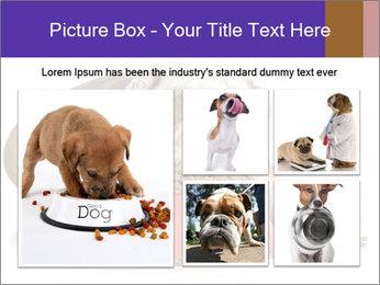 0000081794 PowerPoint Templates - Slide 19