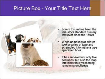 0000081794 PowerPoint Templates - Slide 20